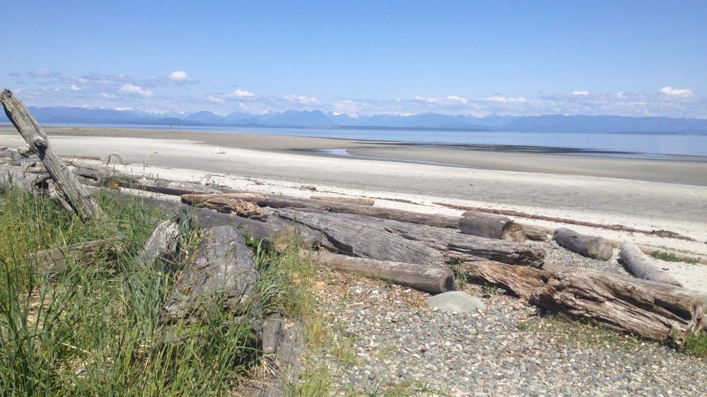 Header Image - Shaping a Positive Future for Campbell River